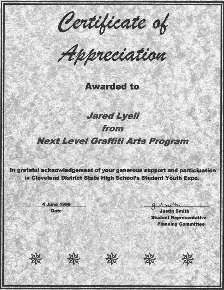 Next Level Certificate 2